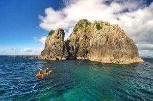 Bay Explorer and Wildlife Cruise